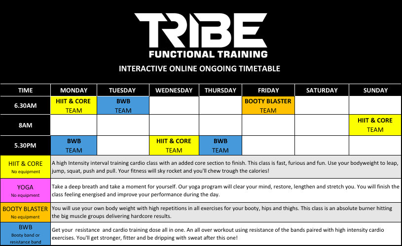 Tribe Online Timetable